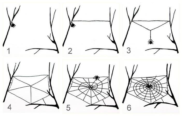 К чему снятся пауки и паутина во сне женщине- Приснилось как большой паук плетет паутину или много пауков на ней- Сонник Энигма