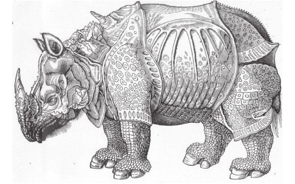 Рис. 5.6. Есть ли в комнате носорог? Этот рисунок носорога работы Конрада Геснера, опубликованный в 1551 году, скопирован с другого рисунка, работы Альбрехта Дюрера. Сам Дюрер никогда не видел носорогов, а его рисунок был выполнен по чужому эскизу и описанию, прочитанному Дюрером в письме.\nИсточник: Gesner, C. (1551). Historia animalium libri I–IV. Cum iconibus. Lib. I.\nDe quadrupedibus uiuiparis. Zurich: C. Froschauer.\n