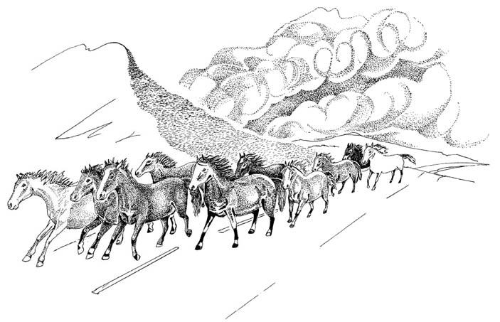 Рис. 10.3. При стихийных бедствиях и люди, и животные часто впадают в панику и мчатся куда глаза глядят, не разбирая дороги