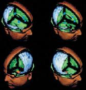 Как работает мозг_врезка