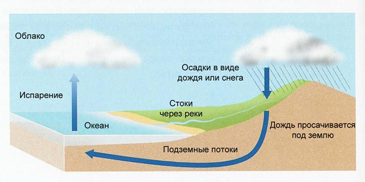 Значение воды в природе схема фото 298
