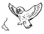 V Всероссийская конференция по поведению животных