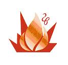 VIII Международная конференция по внутрикамерным процессам и горению в установках на твердом топливе и ствольных системах (ICOC'2014)