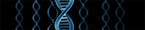 I Международная научно-практическая конференция «Постгеномные методы анализа в биологии, лабораторной и клинической медицине»