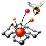 XV Молодежная научная школа-конференция по органической химии
