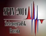 VII Международная конференция по нитроксильным радикалам (SPIN-2014)