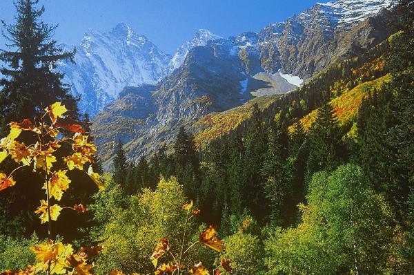 Кавказ национальный парк
