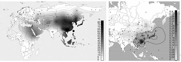 Рис. 1. Географическое распределение аллелей ADH1B*48His и ALDH2*504Lys, снижающих вероятность развития алкоголизма («American Journal of Human Genetics», 2009, 84, 89–92, «Annals of Human Genetics», 2009, 73, 335–345). Русские по этим генам практически не отличаются от жителей Западной Европы