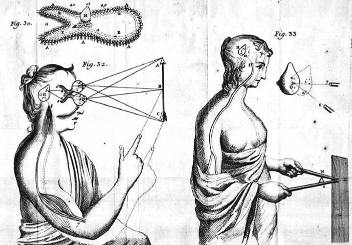 Иллюстрация из французского издания книги Рене Декарта «Человек», 1729 год («Химия и жизнь» №1, 2019)
