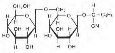 Изображение: «Химия и жизнь»