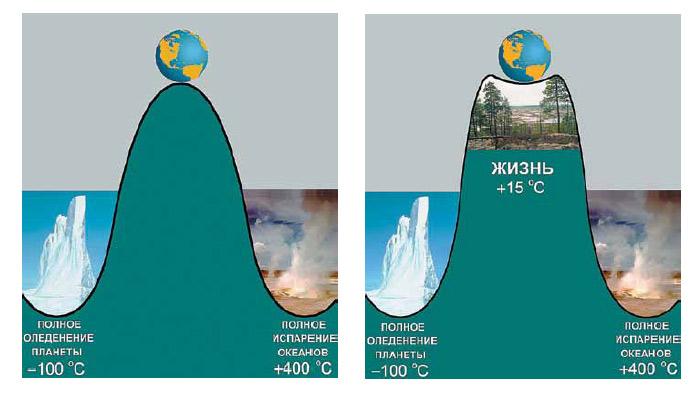 Хрупкое равновесие биосферы. Изображение: «Наука и жизнь»