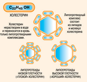 http://elementy.ru/images/eltpub/holest6.jpg