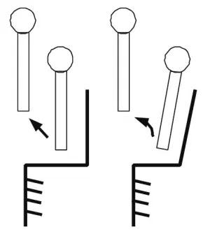 Два возможных варианта движения верхней части туловища Нисы — поступательное и вращательное («Троицкий вариант» №11, 2021)