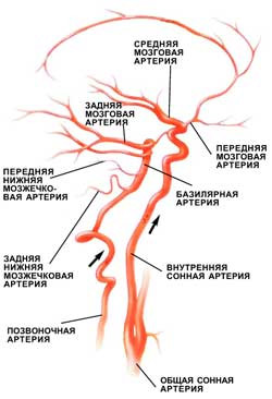 симптомы головокружение тошнота