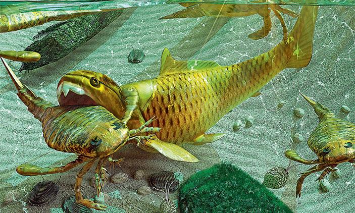 Часть пищевой цепочки в море девонского периода («Кот Шрёдингера» №9–10, 2017)