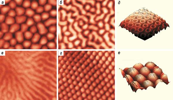 Рис. 7. Нано- и микроструктуры глаз насекомых («Природа» №1, 2015)