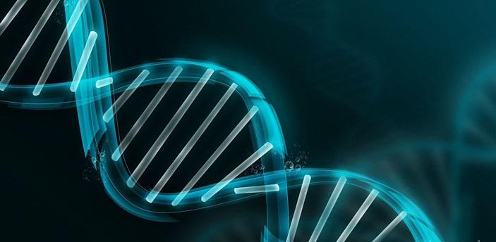 Обыгрывая бога: как делают искусственную ДНК («Популярная механика» №3, 2017)