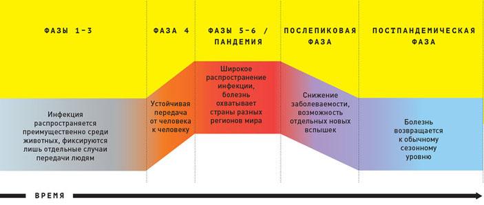 Фазы пандемии («Популярная механика» №11, 2019)