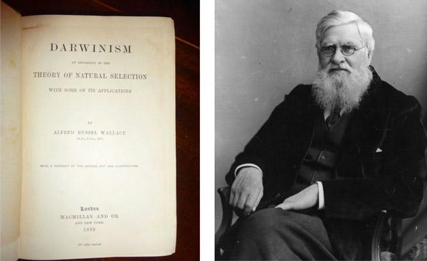 Альфред Рассел Уоллес и его книга «Дарвинизм» (1889)