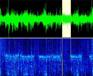 Спектрограмма сна. Белым цветом выделен участок РЕМ-сна (изображение с сайта www.neurotraces.com)