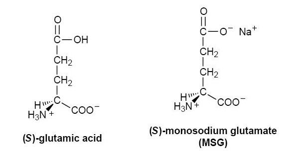 Глутаминовая кислота и глутамат натрия