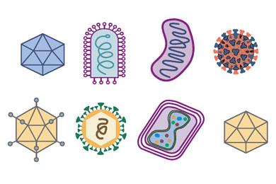 Биология в медицине лечение рака