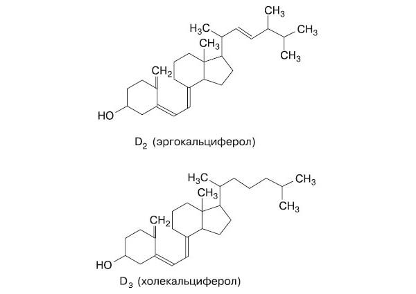 Рис 1. Формулы витаминов D2 и D3
