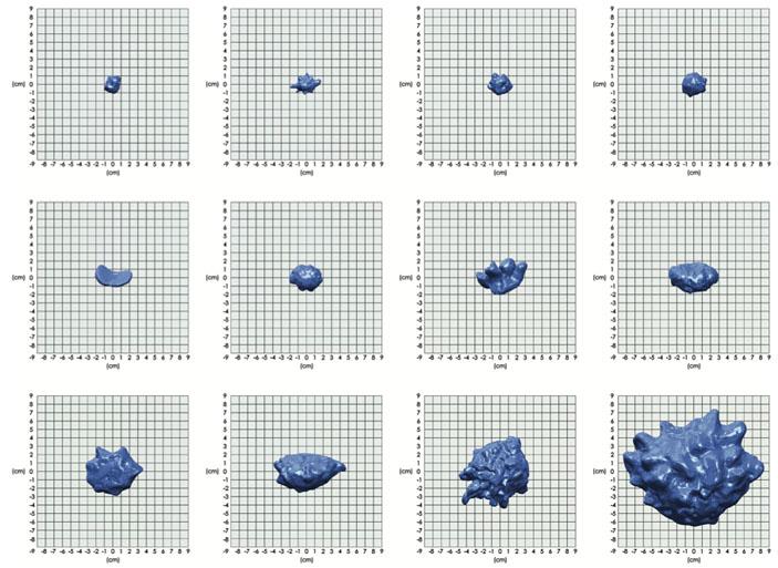 Рис. 3. Примеры форм градин, полученные на основе трехмерного лазерного сканирования («Троицкий вариант» №16, 2021)
