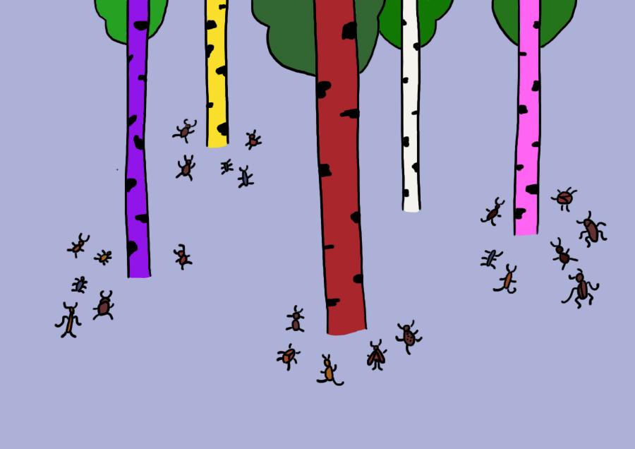 Зачем красят деревья в белый цвет