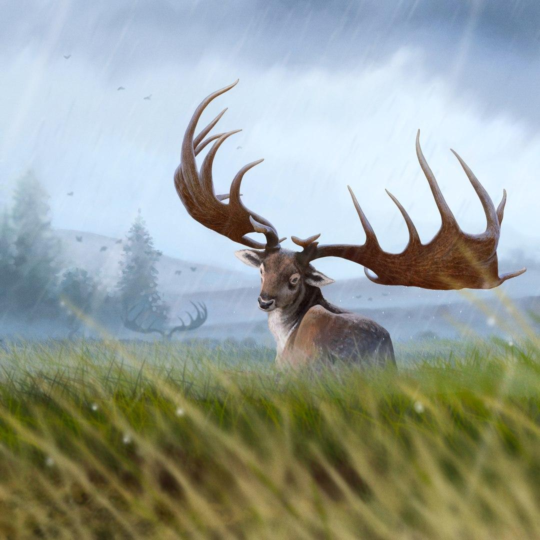 самый большой олень в мире