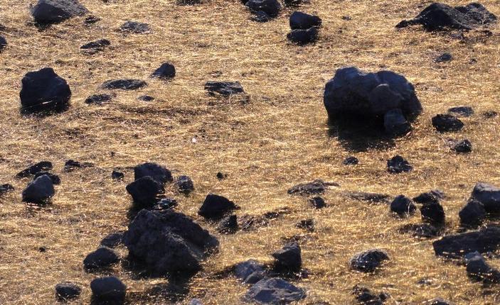 Волосы Пеле в кратере Халемаумау