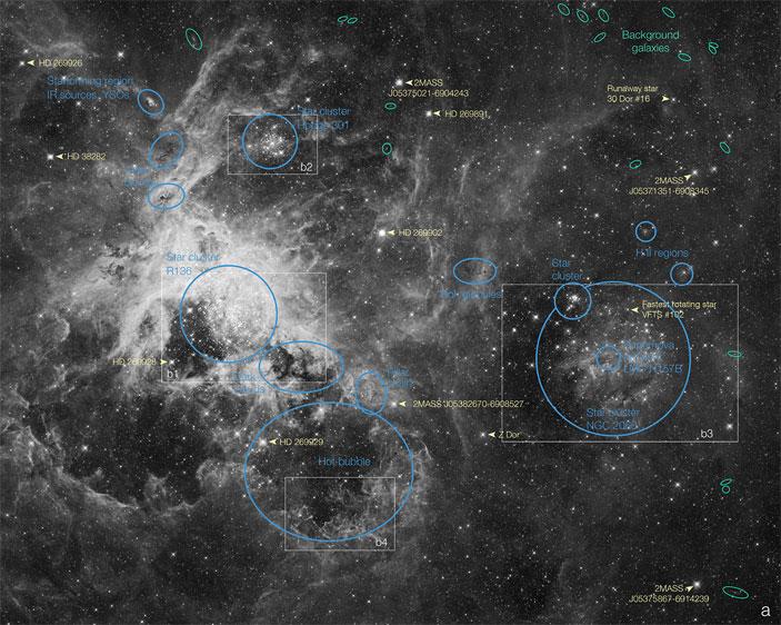 Картинки по запросу Звездное скопление R136 Александр Яровитчук