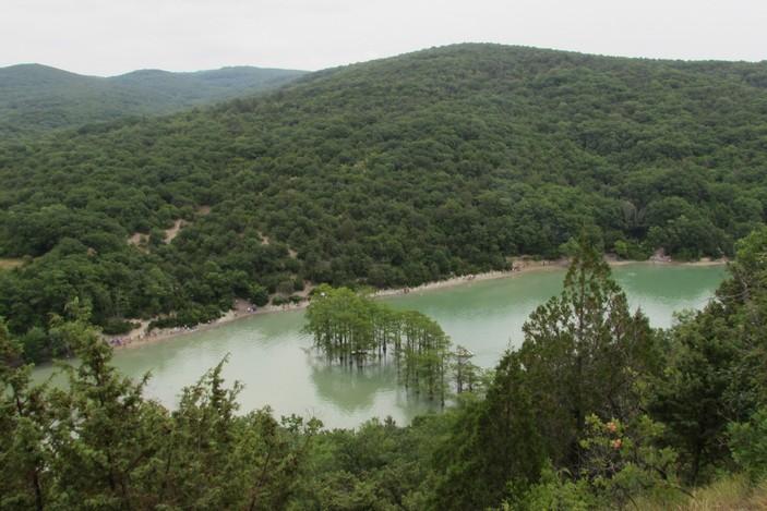 Кипарисовая роща на озере Сукко