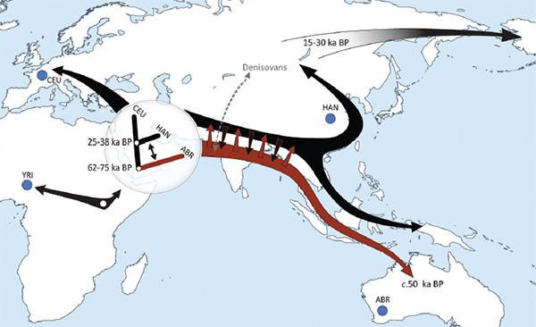 http://elementy.ru/images/news/aboriginal_australian_genome_fig1_600.jpg