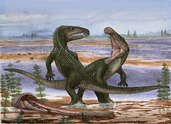 Рис. 1. Один из самых древних архозавров— Archosaurus rossicus, открытый академиком Л.П.Татариновым
