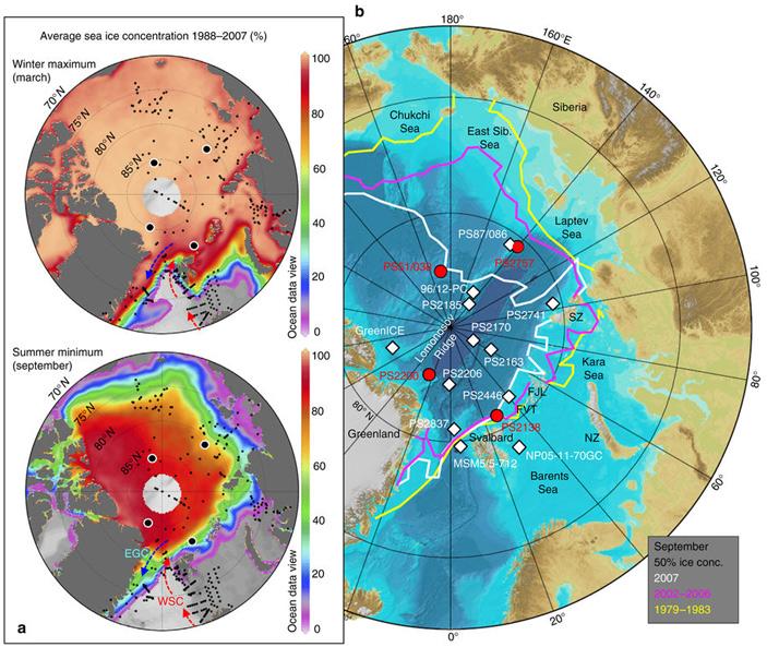 Современный ледовый покров в Арктике и места отбора проб для исследования