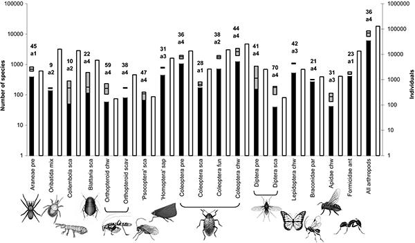 Общее число видов и число особей разных групп членистоногих, собранных на обследуемом участке 0,48га