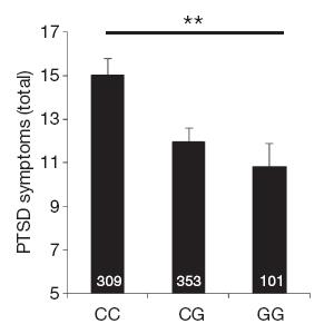 Развитие посттравматического синдрома у женщин взависимости от генотипа. Высота столбиков отражает среднюю степень выраженности симптомов ПТСР. По горизонтальной оси— генотип. Рисунок из обсуждаемой статьи в Nature