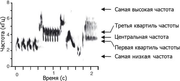 Сонограмма (изменение частоты звука во времени) песни овсянковой птицы Melospiza lincolnii