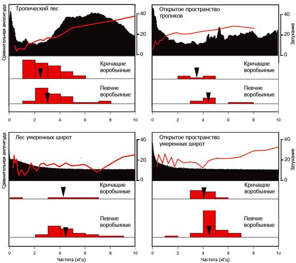 Частотные спектры окружающего шума, записанного в четырех типах биотопов