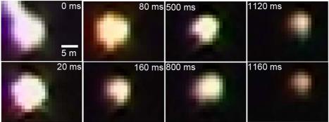 Рис. 3. Некоторые кадры с изображением шаровой молнии, полученные в разные моменты процесса
