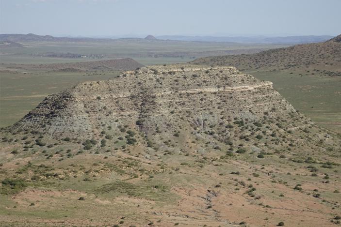 Массовое пермское вымирание на суше началось раньше, чем вокеане