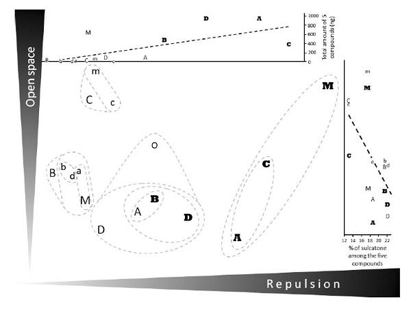 Анализ главных компонент результатов поведения клопов при предъявлении различных экстрактов запахов человека