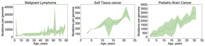 Рис. 6. Встречаемость мутаций в опухолевом геноме в зависимости от возраста