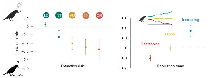 Сообразительность снижает риск вымирания уптиц