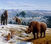 Позднечетвертичное вымирание крупных млекопитающих не имело аналогов в предшествующие эпохи