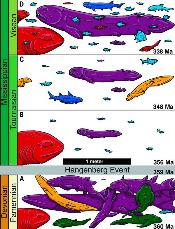 Рис. 3. Соотношение крупных и мелких позвоночных в четырех хорошо изученных до- и послекризисных палеосообществах