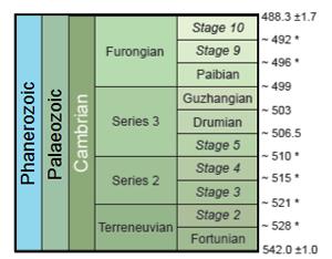 Стратиграфическая схема кембрийского периода