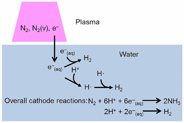 Рис. 3. Активные частицы, содержащиеся в плазме