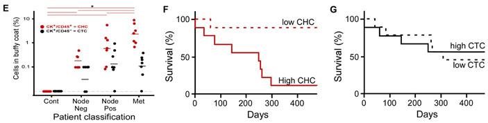 Рис. 6. Содержание гибридов вкрови онкологических больных и корреляция свыживаемостью